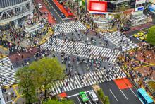 日本公司注册类型解析:株式会社与合同会社哪种适合您?
