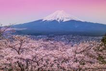 纯干货篇:深度分析日本公司注册最强攻略