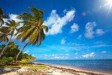 在哪里注册离岸公司最好?常见的离岸注册地有哪些?