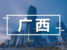 [广西省] 扶绥县人民政府关于印发扶绥县进一步做大做强精深加工制造业的若干优惠政策(试行)的通知